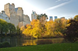 Sustainable Development: Central Park, New York.