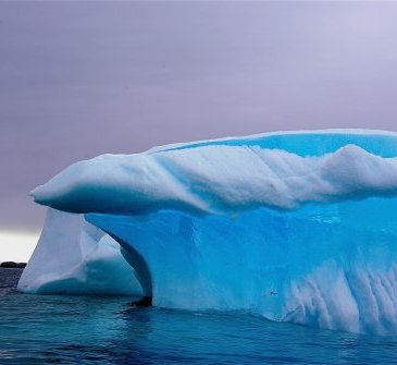 Critical Thinking: Iceberg in Antarctica.